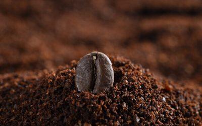 A nagy kávé útmutató: Hatása, története – egészséges? (2021)